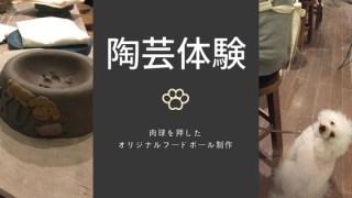 伊豆ペットと陶芸