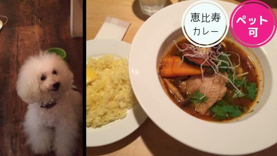 恵比寿ペット可スープカレー