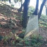 芝丸山古墳の石碑