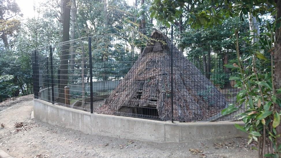 代々木八幡宮に再現された竪穴式住居