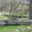 Little Spring Behind Foye Cabin
