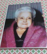 Dona Lucilia Book Study Notebook