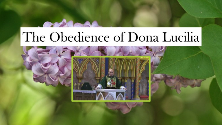 The Obedience of Dona Lucilia