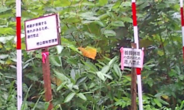 湯の沢冷泉への林道看板