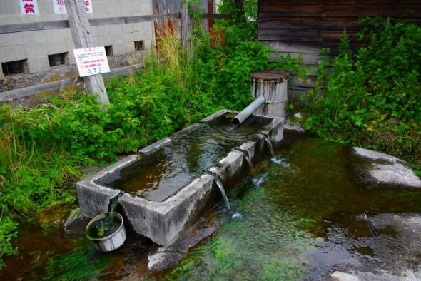 大沼公園駅近くの湧水
