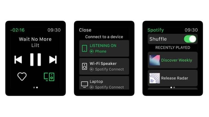 Spotify iPhone Xs Max