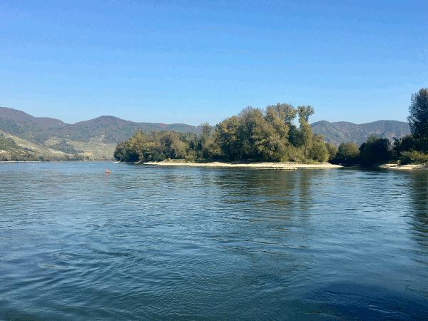 Wilde Auwälder sind Erlebnis und Erholung pur. Mit dem Rad entlang der frei fliessenden Donau zu fahren oder in der Donau, gesäumt von knorrigen Weiden am Flussufer, baden, das ist reiner Genuss.