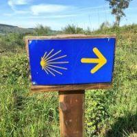 El Camino De Santiago y la diálisis 💉