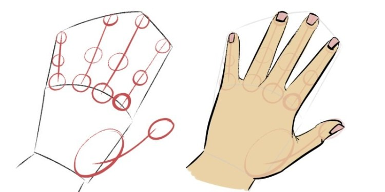 Draw circles for the finger joints, it makes drawing hands much easier