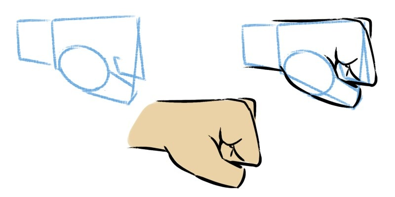 Drawing the knuckles from the side, focus on the main shapes at the top.