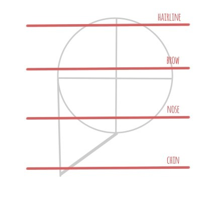 Here are the general dimensions of the face when seen from the side