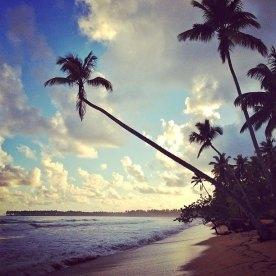 Isla de Samaná, República Dominicana. AMÉRICA