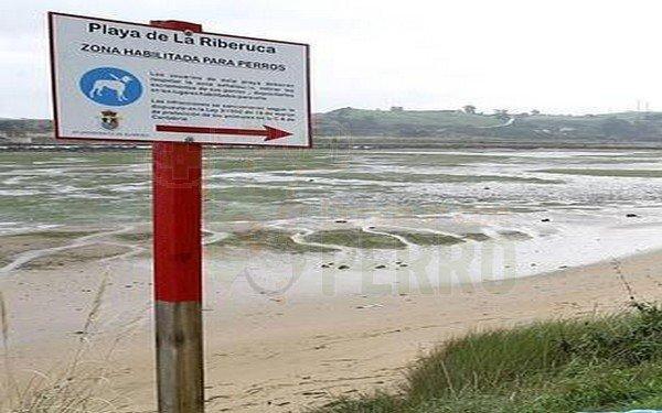 playa riberuca playa que admite perros en Cantabria