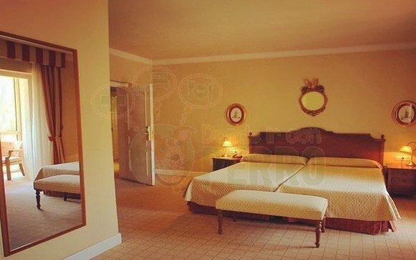 gran hotel pelayo (12)