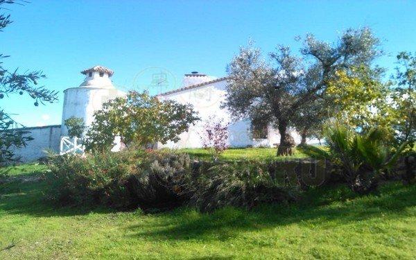 cortijo viña de Duco (10)