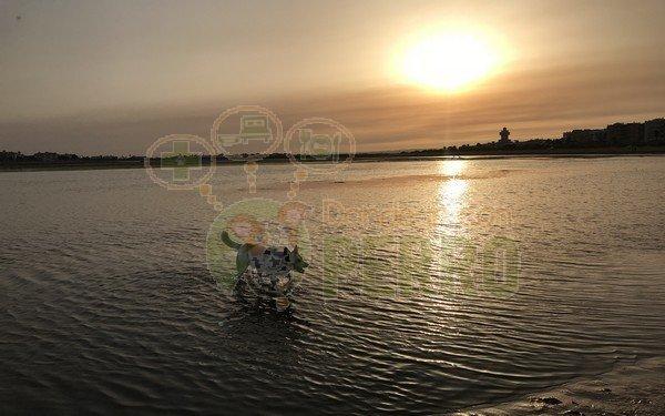 playa de la gola (2)