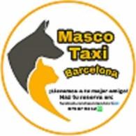 Taxi para perros. Mascotaxi