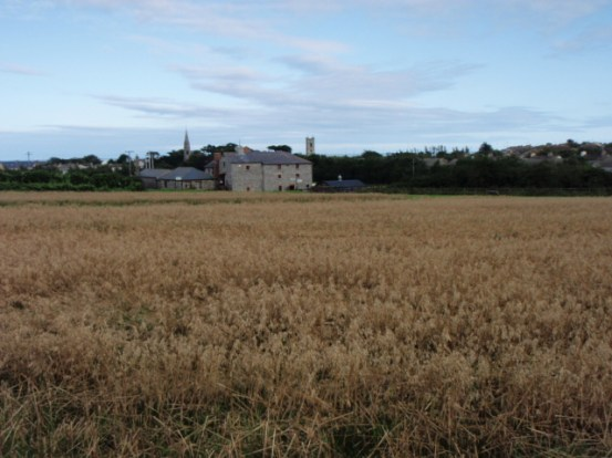skerries mills fingal peter donegan landscape garden blog
