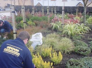 peter donegan landscape garden maintenance swords dublin