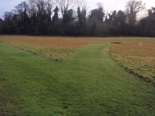 peter-donegan-landscaping-ltd-file-112