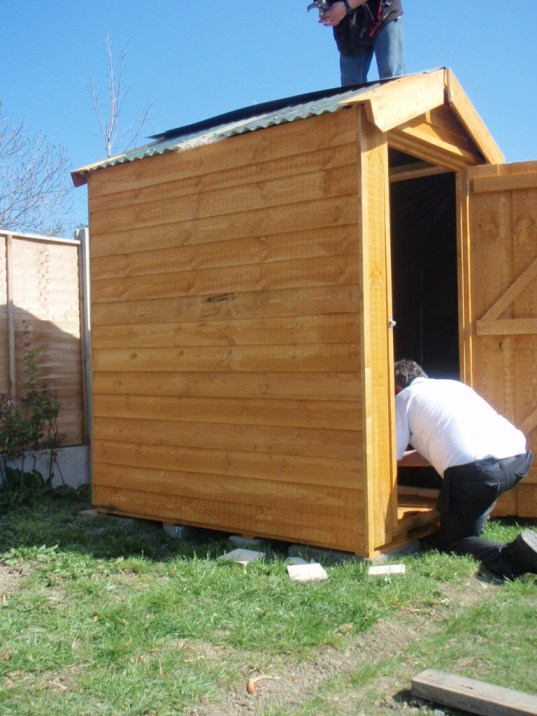 shed for hens