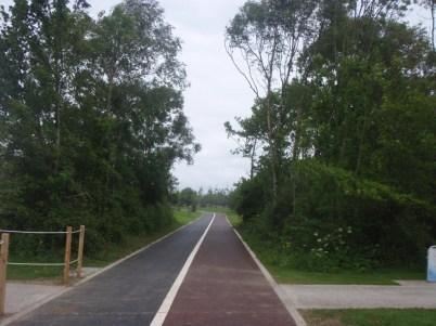 fr-collins-park-trackway