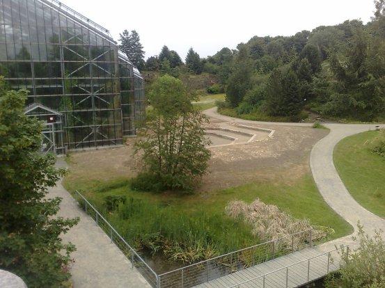 osnabruck-botanical-gardens-images