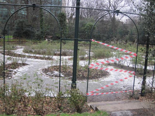 iveagh gardens (25)