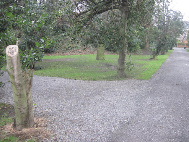 iveagh gardens (45)