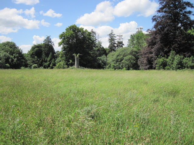 battle of the boyne site 052