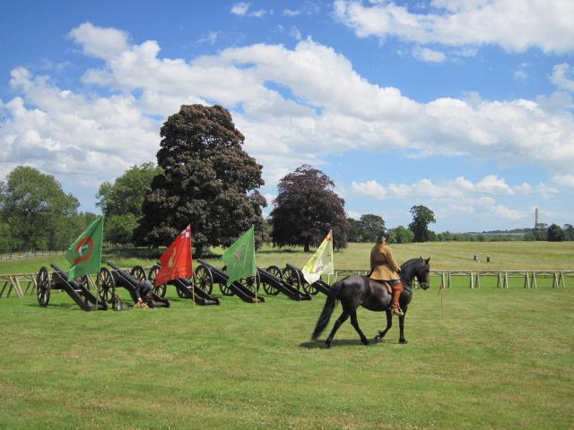 battle of the boyne site 075