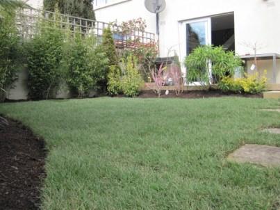 garden dublin (1)