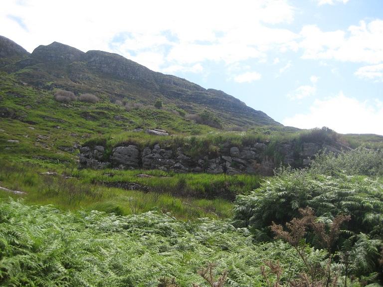 ladies view killarney (5)