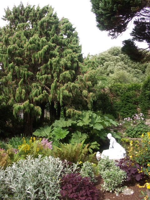 peter donegan gardens (24)