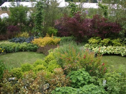 peter donegan landscaping (130)