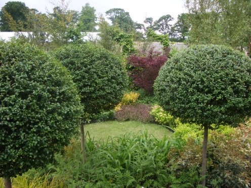 peter donegan landscaping (131)