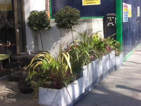 plants shop front