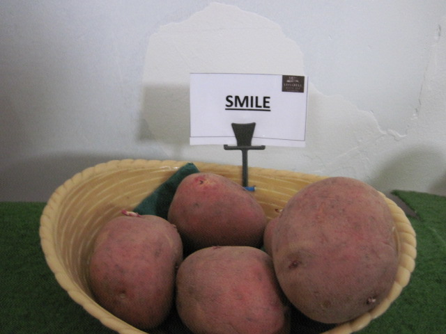 sonairte potato day march 2011 019