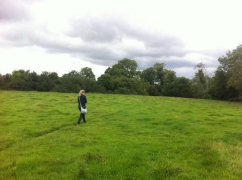 hedgerow walk heritage week 2011 (12)