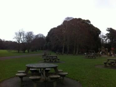 st annes park (2)