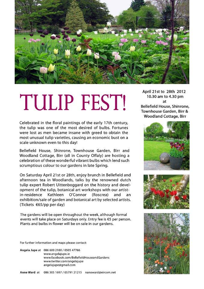 tulip festival 2012