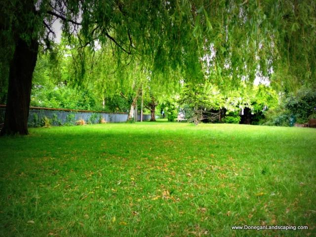 lucan village park (5)