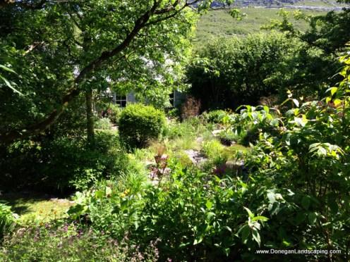 caher bridge garden (15)