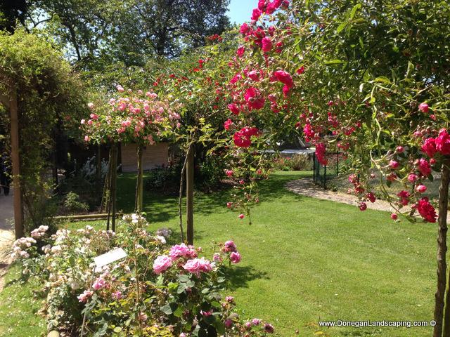 les jardins du val cocherel (12)