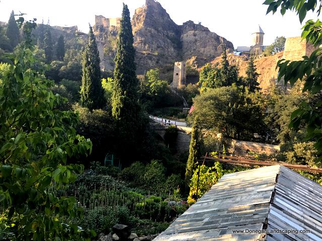 National Botanic Garden of Georgia (16)