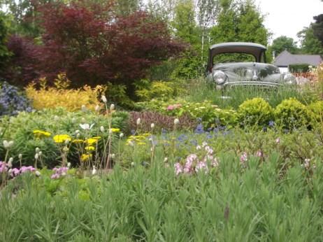 car garden