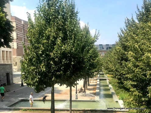 Jardin Medieval, Amiens