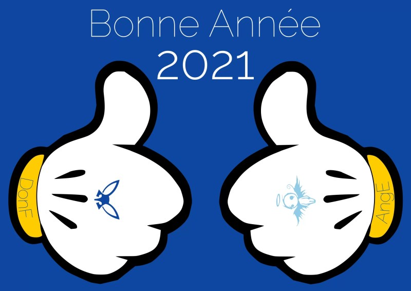 bonne annee 2021 • 1