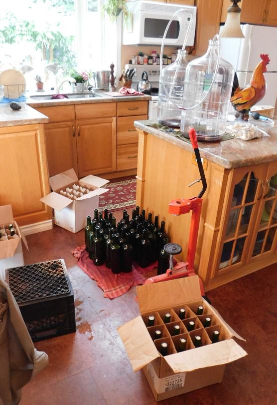Bottling wine
