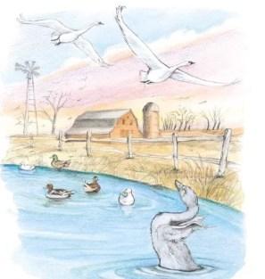 bebek buruk rupa pergi menjauhi kawanan - cerita fabel